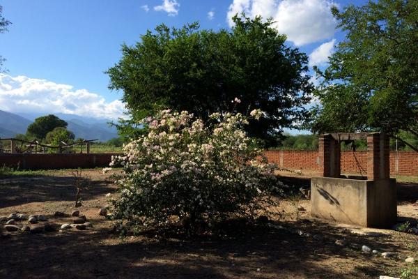 Foto de rancho en venta en carrtera interejidal 0, victoria, victoria, tamaulipas, 2651542 No. 04