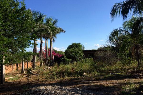 Foto de rancho en venta en carrtera interejidal 0, victoria, victoria, tamaulipas, 2651542 No. 09