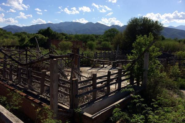 Foto de rancho en venta en carrtera interejidal 0, victoria, victoria, tamaulipas, 2651542 No. 14