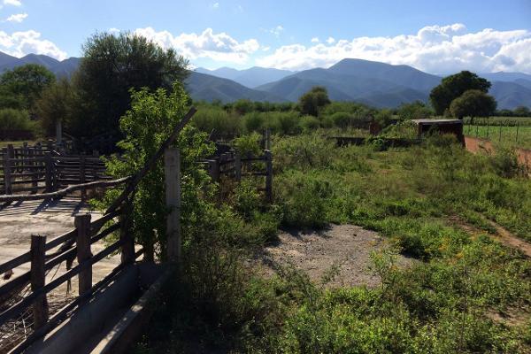Foto de rancho en venta en carrtera interejidal 0, victoria, victoria, tamaulipas, 2651542 No. 17