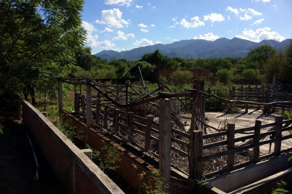 Foto de rancho en venta en carrtera interejidal 0, victoria, victoria, tamaulipas, 2651542 No. 21