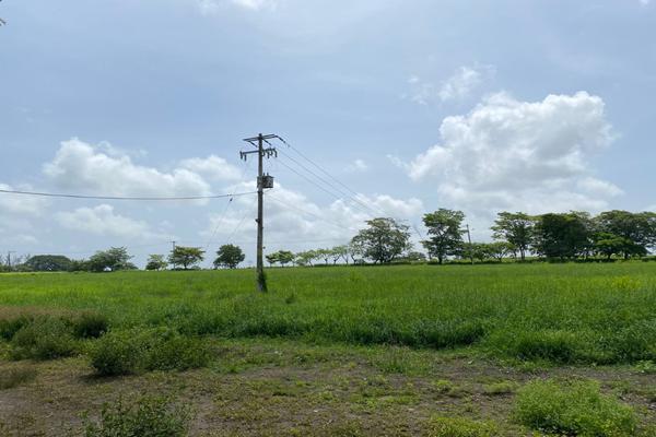 Foto de terreno habitacional en venta en carrtetera federal ver-xal , el pando, veracruz, veracruz de ignacio de la llave, 5816111 No. 04