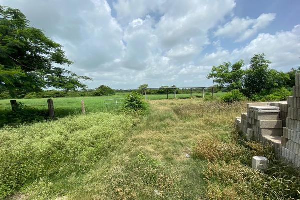 Foto de terreno habitacional en venta en carrtetera federal ver-xal , el pando, veracruz, veracruz de ignacio de la llave, 5816111 No. 05