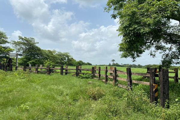Foto de terreno habitacional en venta en carrtetera federal ver-xal , el pando, veracruz, veracruz de ignacio de la llave, 5816111 No. 06