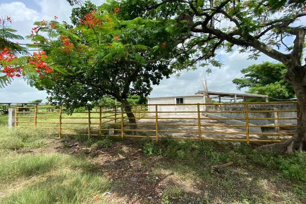 Foto de terreno habitacional en venta en carrtetera federal ver-xal , el pando, veracruz, veracruz de ignacio de la llave, 5816111 No. 09