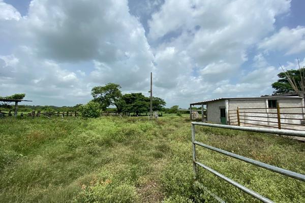Foto de terreno habitacional en venta en carrtetera federal ver-xal , el pando, veracruz, veracruz de ignacio de la llave, 5816111 No. 10