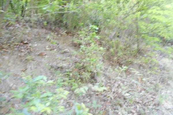 Foto de terreno habitacional en venta en cascadas 04, cerro de la silla uc, guadalupe, nuevo león, 6341199 No. 07