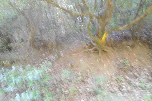 Foto de terreno habitacional en venta en cascadas 04, cerro de la silla uc, guadalupe, nuevo león, 6341199 No. 05