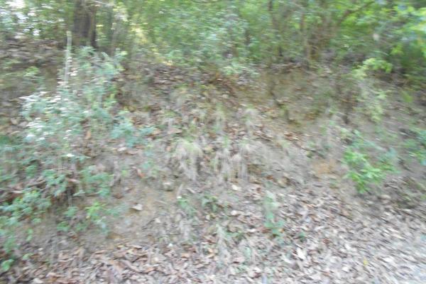 Foto de terreno habitacional en venta en cascadas 04, cerro de la silla uc, guadalupe, nuevo león, 6341199 No. 06
