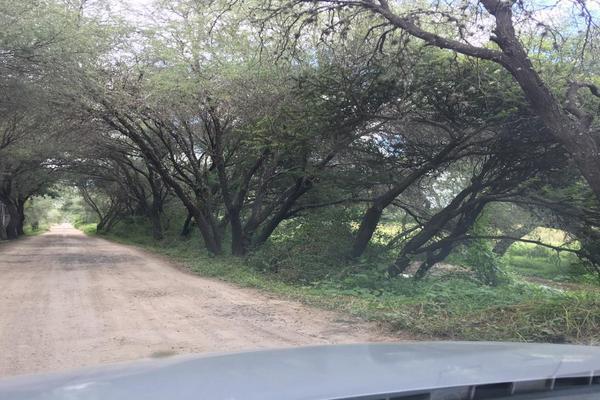 Foto de rancho en venta en  , castaño de abajo, san miguel de allende, guanajuato, 7299933 No. 17