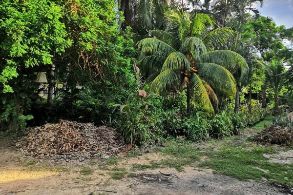 Foto de terreno industrial en venta en castelli 10, villas diamante i, acapulco de juárez, guerrero, 12055722 No. 03