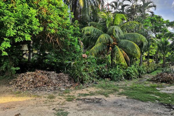 Foto de terreno industrial en venta en castelli 10, villas diamante ii, acapulco de juárez, guerrero, 12055722 No. 03
