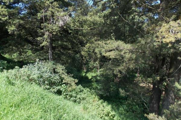 Foto de terreno habitacional en venta en cedros 35, club de golf los encinos, lerma, méxico, 5906812 No. 04