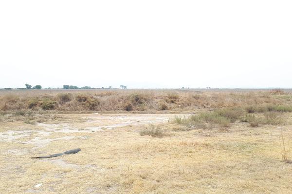 Foto de terreno habitacional en venta en  , cedros, tolcayuca, hidalgo, 7281226 No. 03