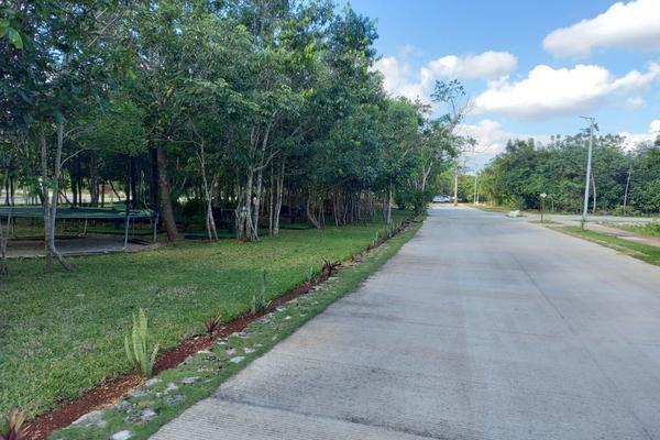 Foto de terreno habitacional en venta en ceiba , villas del arte, benito juárez, quintana roo, 20107028 No. 01
