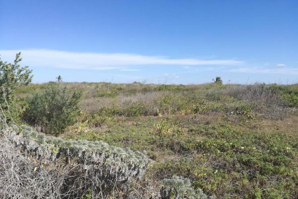 Foto de terreno habitacional en venta en  , celestun, celestún, yucatán, 7912728 No. 02
