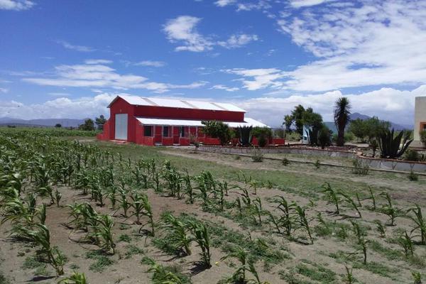 Foto de rancho en venta en central 1, el fuerte de la unión, tepeyahualco, puebla, 9093791 No. 16
