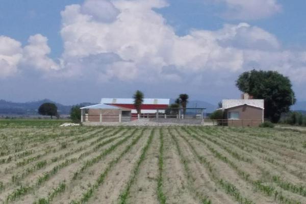 Foto de rancho en venta en central 1, el fuerte de la unión, tepeyahualco, puebla, 9093791 No. 17