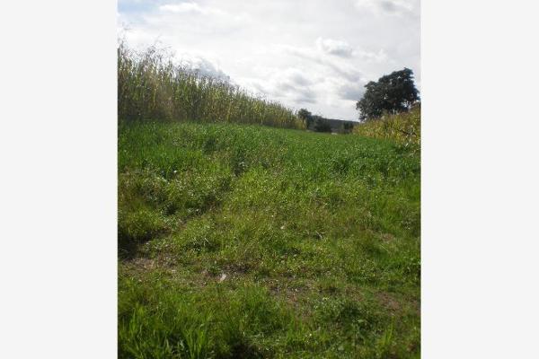 Foto de terreno comercial en venta en  , central de abastos, puebla, puebla, 2707402 No. 02