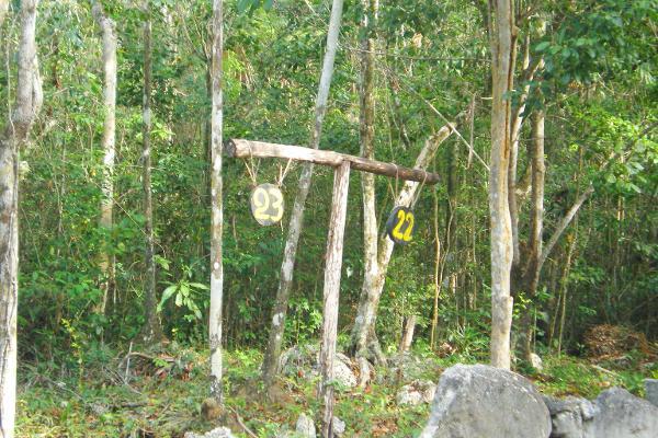 Foto de terreno comercial en venta en central vallarta , puerto morelos, benito juárez, quintana roo, 3460339 No. 15