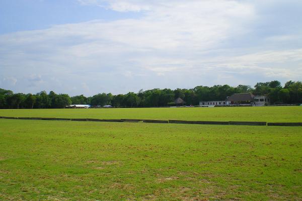 Foto de terreno comercial en venta en central vallarta , puerto morelos, benito juárez, quintana roo, 3460339 No. 16