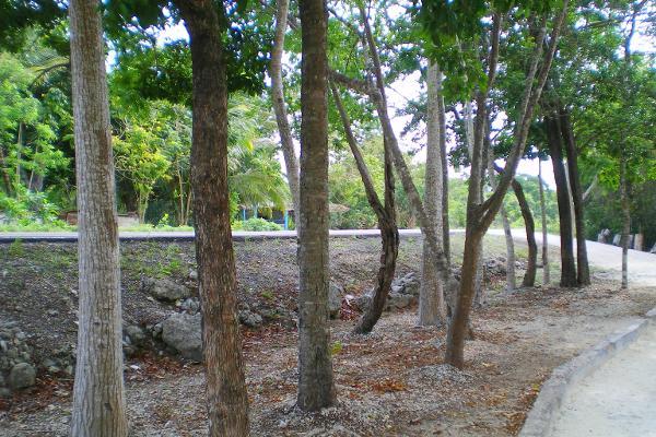 Foto de terreno comercial en venta en central vallarta , puerto morelos, benito juárez, quintana roo, 3460339 No. 19