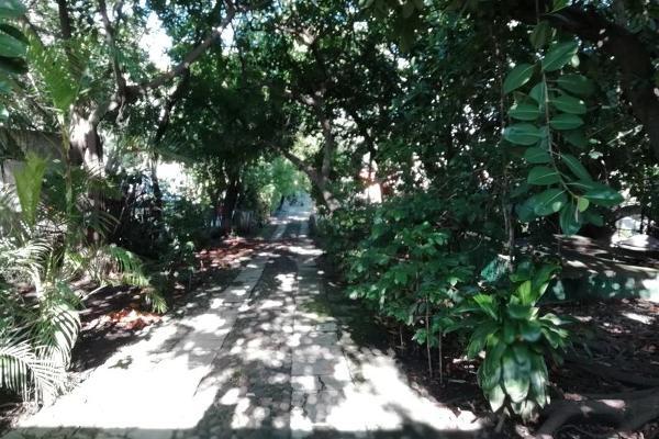 Foto de terreno habitacional en venta en centro 0, cuernavaca centro, cuernavaca, morelos, 5813103 No. 04
