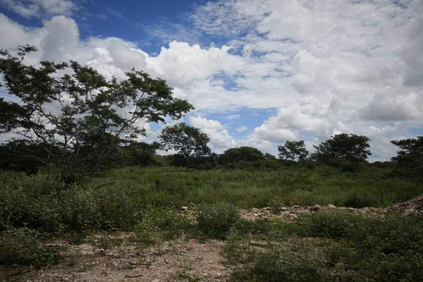 Foto de terreno comercial en venta en centro 00, izamal, izamal, yucatán, 8702022 No. 04