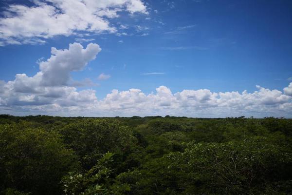 Foto de terreno comercial en venta en centro 00, izamal, izamal, yucatán, 8702022 No. 05