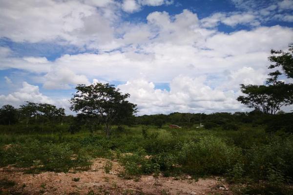 Foto de terreno comercial en venta en centro 00, izamal, izamal, yucatán, 8702022 No. 06