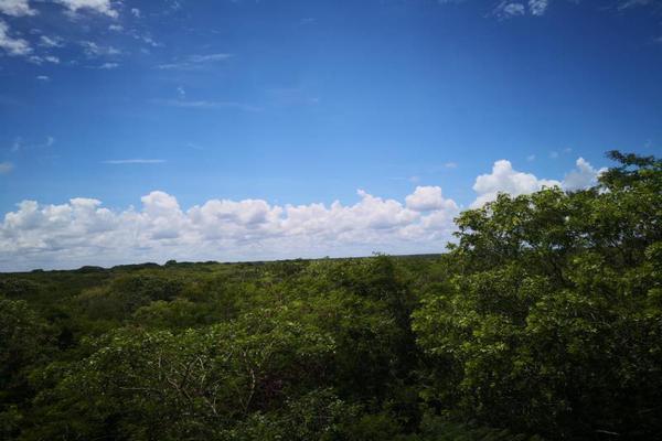 Foto de terreno comercial en venta en centro 00, izamal, izamal, yucatán, 8702022 No. 11