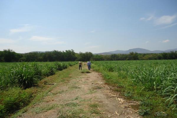 Foto de terreno comercial en venta en centro 00, tehuixtla, jojutla, morelos, 8735650 No. 01