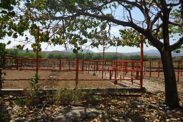 Foto de terreno comercial en venta en centro 00, tehuixtla, jojutla, morelos, 8735650 No. 02