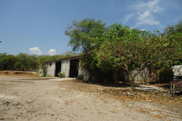 Foto de terreno comercial en venta en centro 00, tehuixtla, jojutla, morelos, 8735650 No. 03