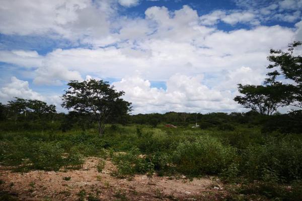 Foto de terreno comercial en venta en centro 111c, izamal, izamal, yucatán, 7514892 No. 03