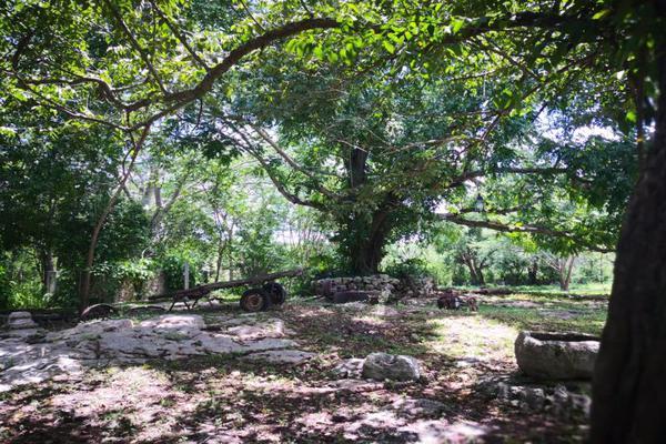 Foto de terreno comercial en venta en centro 111c, izamal, izamal, yucatán, 7514892 No. 06