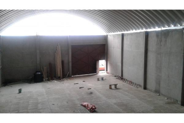 Foto de bodega en renta en  , centro, apizaco, tlaxcala, 5909965 No. 09