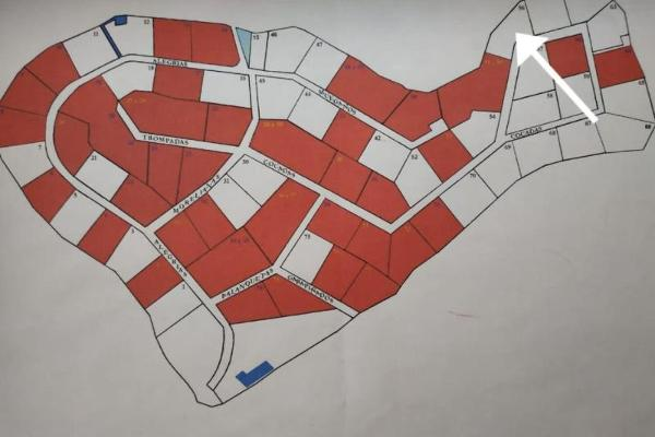 Foto de terreno habitacional en venta en  , centro jiutepec, jiutepec, morelos, 15380261 No. 09