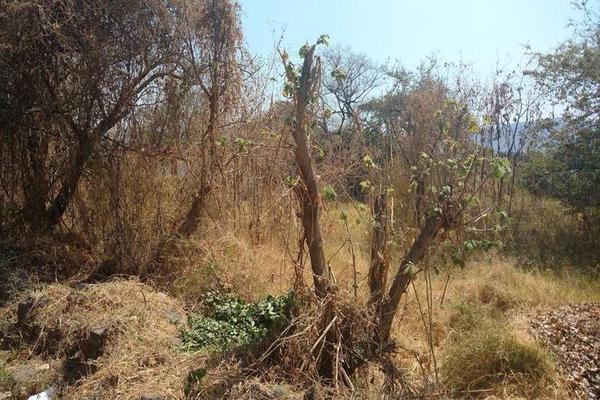 Foto de terreno habitacional en venta en  , centro jiutepec, jiutepec, morelos, 7962226 No. 03