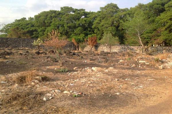 Foto de terreno habitacional en venta en  , centro jiutepec, jiutepec, morelos, 8426053 No. 02