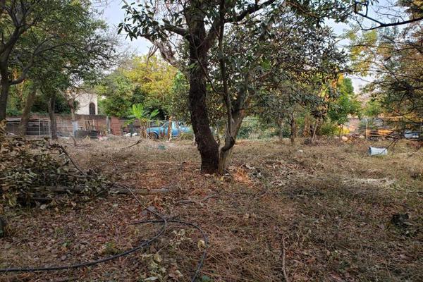 Foto de terreno habitacional en venta en centro oo, itzamatitlán, yautepec, morelos, 10097919 No. 02