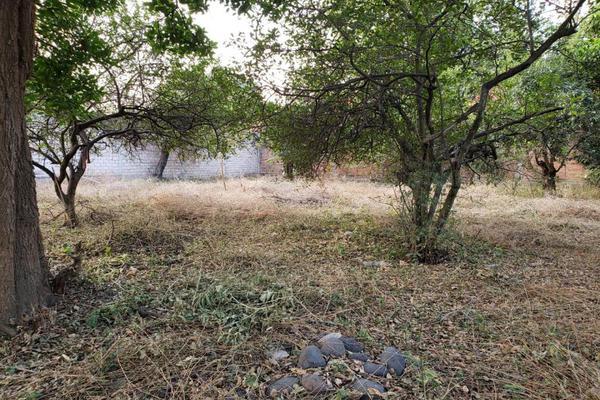 Foto de terreno habitacional en venta en centro oo, itzamatitlán, yautepec, morelos, 10097919 No. 03