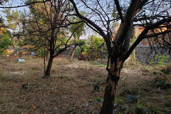 Foto de terreno habitacional en venta en centro oo, itzamatitlán, yautepec, morelos, 10097919 No. 04