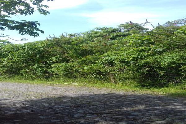 Foto de terreno habitacional en venta en centro , santa cecilia, comala, colima, 16941000 No. 02