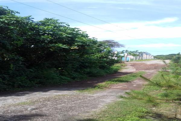 Foto de terreno habitacional en venta en centro , santa cecilia, comala, colima, 16941000 No. 05
