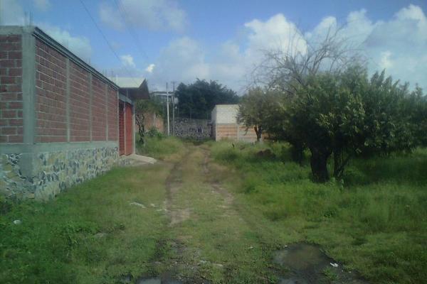 Foto de terreno habitacional en venta en  , centro, yautepec, morelos, 2730524 No. 07