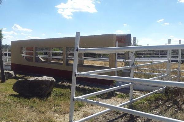 Foto de casa en venta en  , cerca blanca, yahualica de gonzález gallo, jalisco, 7953788 No. 38