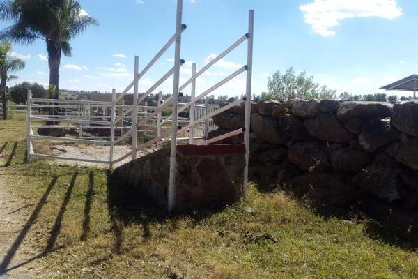 Foto de casa en venta en  , cerca blanca, yahualica de gonzález gallo, jalisco, 7953788 No. 39