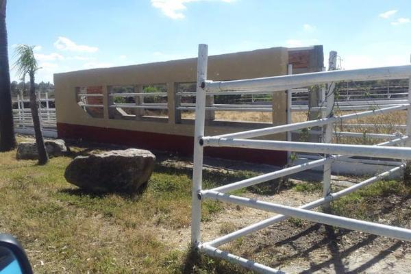 Foto de casa en venta en  , cerca blanca, yahualica de gonzález gallo, jalisco, 7953788 No. 40
