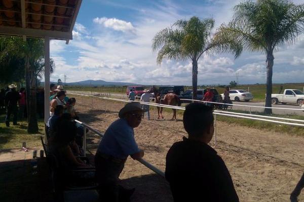 Foto de casa en venta en  , cerca blanca, yahualica de gonzález gallo, jalisco, 7953788 No. 50